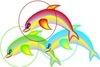 Dolphin1_1